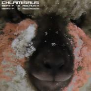 Chlamisaus